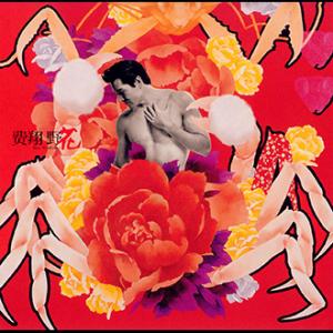 200111費翔-野花(封面)